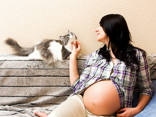 pregnant-woman-and-cat